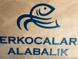 ERKOCALAR ALABALIK